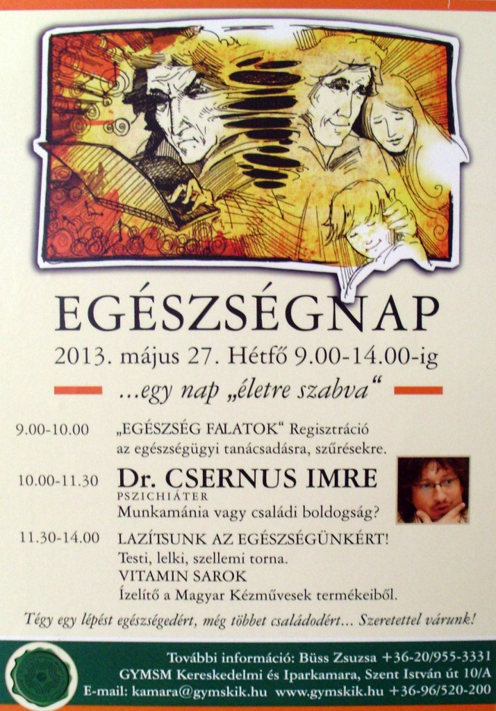 Egészségnap 2013-05-27 Győr, Hegyi & Kiss, Mini Szanatórium1