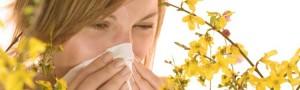 Parlagfű allergia enyhítése a Mini Szanatórium1 sóinhalátor segítségével!